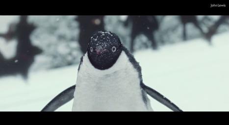 La publicité toute mignonne de John Lewis pour Noël | ALAN 9 Communication | Scoop.it
