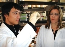 Self-cleaning membrane aids in diabetic research | diabetes and more | Scoop.it