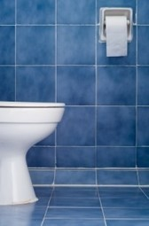 Sin papel higiénico   El Adarve   Educar en la Sociedad del Conocimiento   Scoop.it