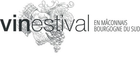 Vinestival festival d'oenotourisme   Route des vins   Scoop.it