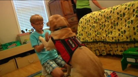 Dogs warns boy when diabetic dangers arise - WSFA | Diabetes Counselling Online | Scoop.it
