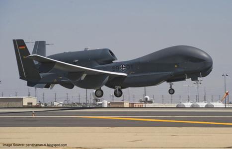 Germany to Restart Euro Hawk Drone Project   World Latest News   Scoop.it