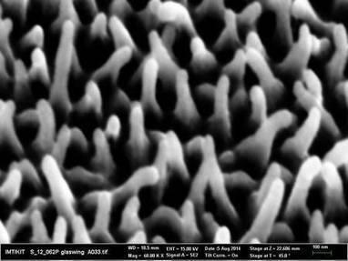 Biomimétisme : des écrans antireflets inspirés d'ailes de papillons   Innovation from chemistry   Scoop.it