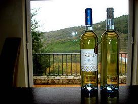 The Wizard Apprentice: O Valor da ilusão. | Wine Lovers | Scoop.it