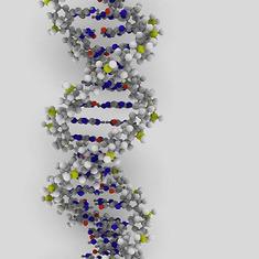 World Repository of Human Genetics Will Move to Amazon's Cloud: Scientific American | Big Data | Scoop.it