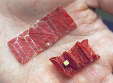 Programmable Matter in Medical Technology: The Origami Robot Made of Meat | Electronique et Instrumentation Biomédicales | Scoop.it