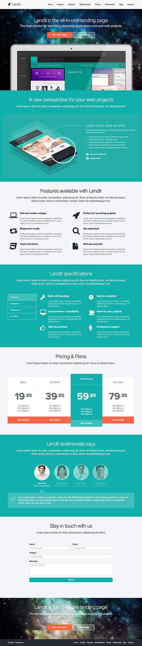 Top 10 Landing Page sous WordPress 2014 | SeoPowa | Internet | Scoop.it