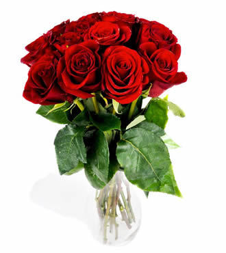 12stems red roses bouquet deliver to your teacher to congratulate her for a healthy new born baby. – Red_Roses_Bouquet#008 | mother's day flower | Scoop.it