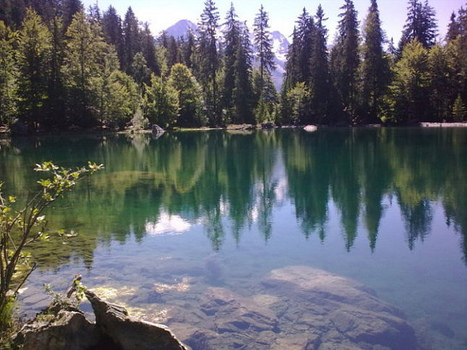 Lac Vert | The Blog's Revue by OlivierSC | Scoop.it