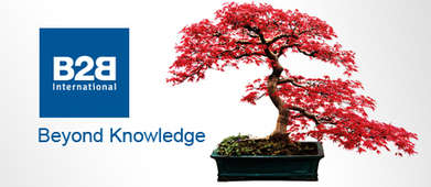 B2B International launches 'Beyond Knowledge' - Market Research Bulletin   Research Topics   Scoop.it