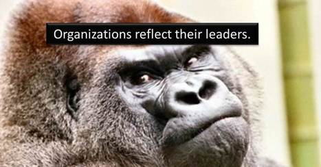 20 Things all Great Organizational Leaders Do | Leadership | Scoop.it