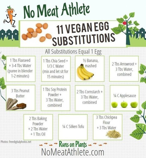 11 healthy (and vegan!) egg substitutes, plus more baking swaps for fats, white... | Plant Based Transitions | Scoop.it