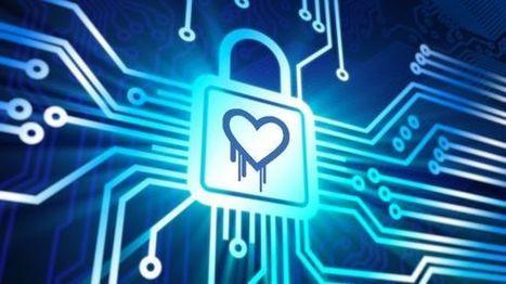 Heartbleed Tehditi Tehlikeli Boyutlara Ulaştı | Teknokopat | Scoop.it