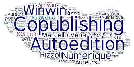 Co-Publishing : une troisième voie entre édition et autoédition? | Digital marketing in publishing industry | Scoop.it