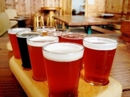 Beer, Glorious Beer (And Technology)   BEER!   Scoop.it