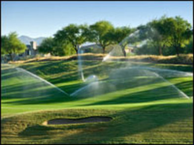 Water-Thirsty Golf Courses Need to Go Green | Sustainability Science | Scoop.it