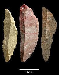 Des outils de chasse à Pinnacle Point il y a 71 000 ans | Aux origines | Scoop.it
