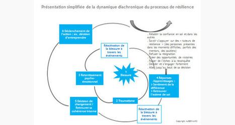 La résilience entrepreneuriale, une opportunité ? | Centre des Jeunes Dirigeants Belgique | Scoop.it