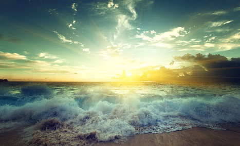 #EconomieRéelle : Quand l'éco-conception transforme l'océan en mine d'or ! | Economies alternatives ..... | Scoop.it