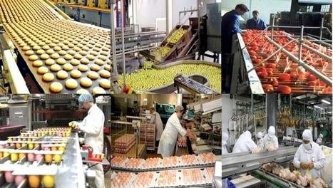 L'Algérie s'achemine vers la réalisation d'une véritable base d'industries agro-alimentaires - APS | L'œil de Dijon Céréales | Scoop.it