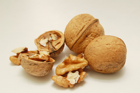Los ácidos grasos omega-3 no frenan el deterioro del cerebro   Zumos Naturales   Scoop.it