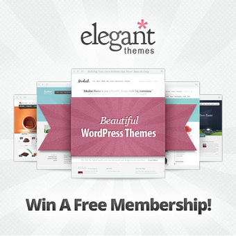 Giveaway : Win 3 Developer Accounts From Elegant Themes | Blogging Contests | Scoop.it