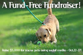 Bunny's Blog: Help Support Rescue Animals with #BTC4A Fund-Free Fundraiser! | Pet News | Scoop.it