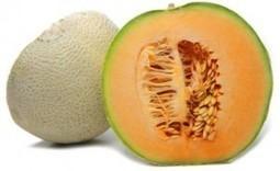 How Do Pathogens Get Into Produce? | Food Safety News | Sistemas de Gestión | Scoop.it