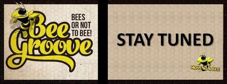 Night Life : Bee Groove with ♛ BSM by Move As A Bee | Casablanca cultural life | Scoop.it