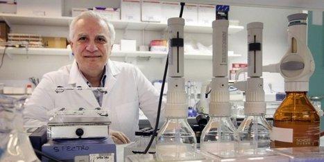 Une molécule protégeant le cerveau d'une addiction au cannabis ... | Toxicomanie | Scoop.it