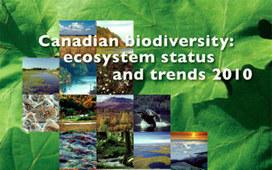 biodivcanada.ca - Home   GarryRogers Biosphere News   Scoop.it