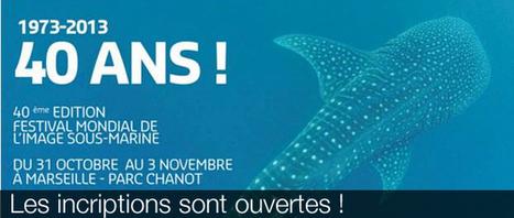 40ème édition du Festival de l'image sous-marine: toutes les infos pratiques ! | Plongée | Scoop.it