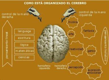 Neurociencia, emoción y educación | Mirá lo que encontré | Scoop.it