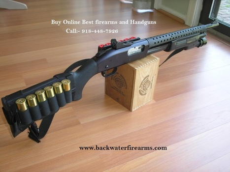 Backwater Fire : How to Purchase Firearms and Handguns Online? | Online Gun Shop | Scoop.it