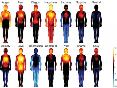 Bodily Map Of Emotions | mhealth | Scoop.it