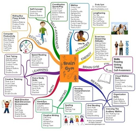 Brain Gym The Little Orange Book   free iMindMap mind map download   Biggerplate   Mindyourorganisation   Scoop.it