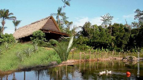 La Bitassion Patawa   Le Tourisme en Guyane   Scoop.it