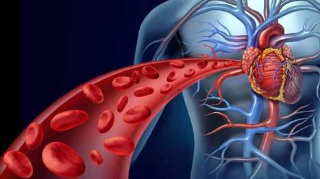 New blood clot-busting nanocapsule promises immediate care for heart attacks | Longevity science | Scoop.it