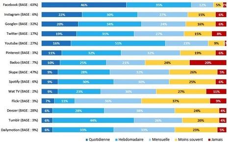 Les réseaux sociaux et les français en 2013 - Étude IFOP | imagescreations | Scoop.it