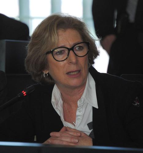 Le siège d'ITER inauguré en présence de la Ministre Geneviève Fioraso | Enseignement Supérieur et Recherche en France | Scoop.it