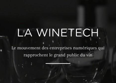 Le vin, une révolution en marche, une évolution en action. | Verres de Contact | Scoop.it
