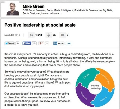 The #SocialCEO Means Business #linkedin #CEO @michae1green @kinshipd | Social Media and the economy | Scoop.it