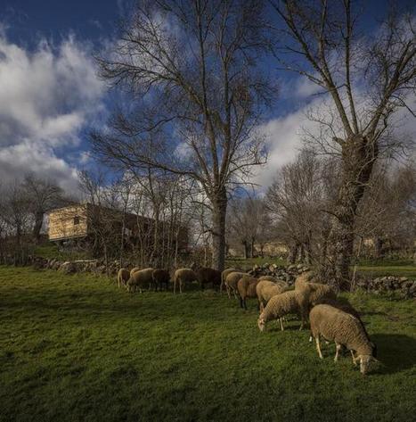 Casa 4 estaciones, solo madera. | METALOCUS | VIVIENDA ECOLÓGICA Y ASEQUIBLE | Scoop.it