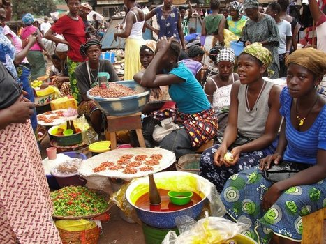 Nigeria, 19 other countries cut population of hungry citizens by half, meet MDG one target- FAO - Premium Times Nigeria | Theme 4: People & Development | Scoop.it