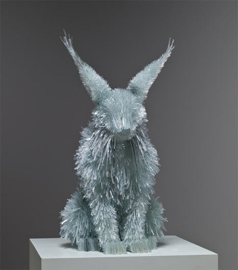 Shattered Glass Animals by Marta Klonowska | Diseño Web en Colombia, 3D SEO y Social Media | Scoop.it
