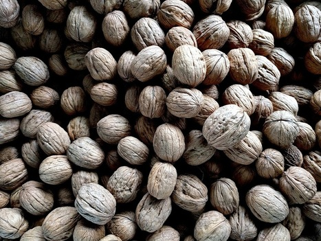 5 Best and healthy nuts to add in your diet - Live Sturdy | Stories that Inspire | Scoop.it