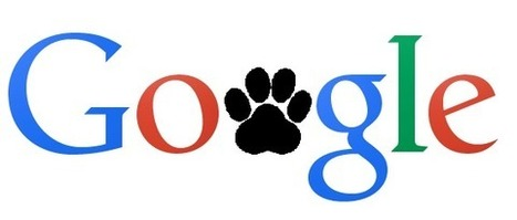 Google Panda 4.2 Roll Out: New Algorithm Update for SEO | Digital Marketing | Scoop.it