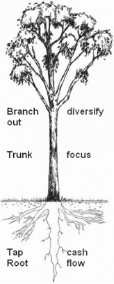 5 Things Business Can Learn from a Tree | New Leadership | Scoop.it