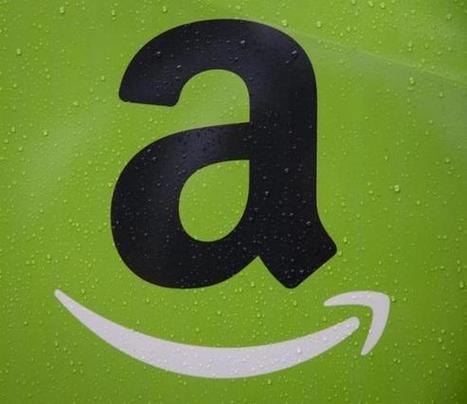 Amazon blasts U.S. agency for slowness on drone regulation   Business - Emerging Technologies - Movers & Shakers   Scoop.it