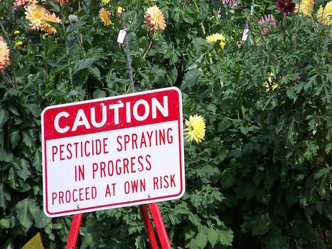 Le moratoire sur les pesticides tueurs d'abeilles n'est toujours pas appliqué | Economie publique | Scoop.it